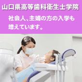 県 医師 会 歯科 山口